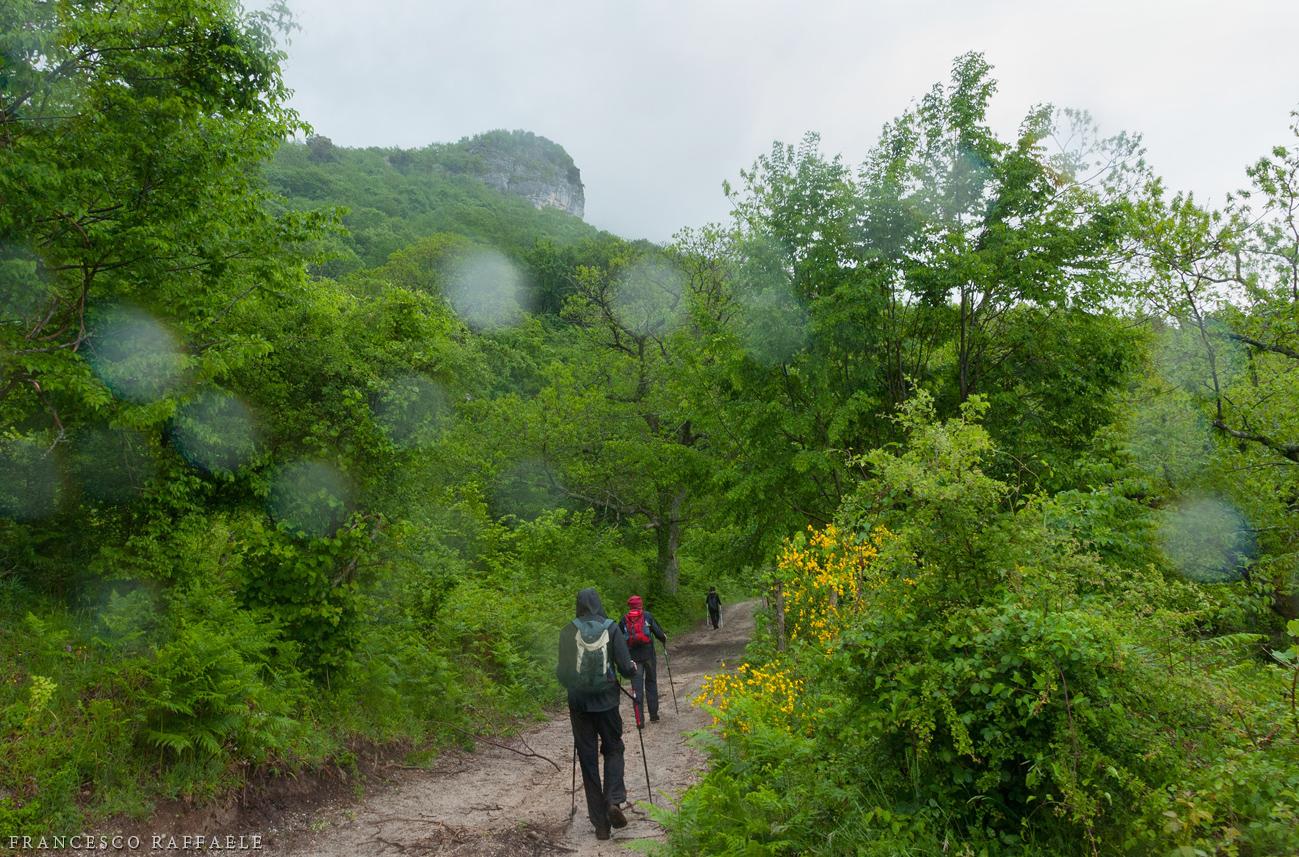 Acellica cascate e grotta dello scalandrone for Piani domestici di alan mascord